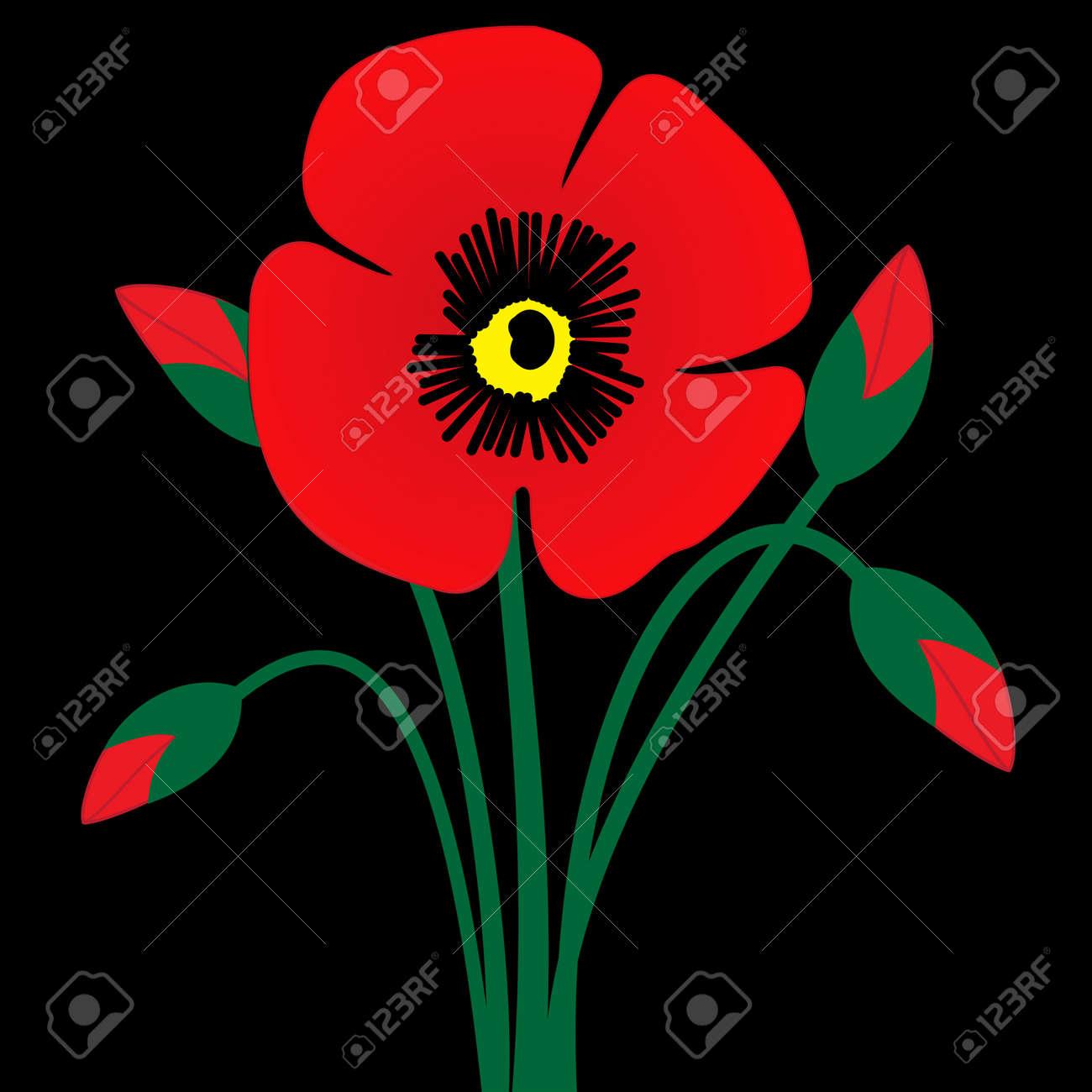 Illustration Of Poppy Flower Bud On A Black Background Royalty Free