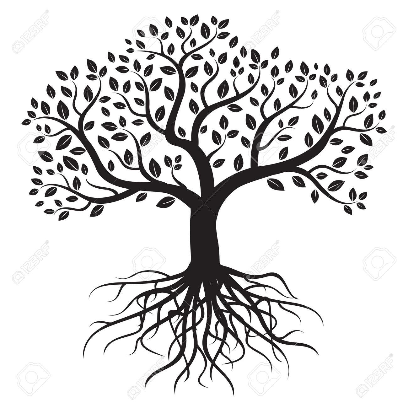 vector árbol con raíces y hojas ilustraciones vectoriales clip art