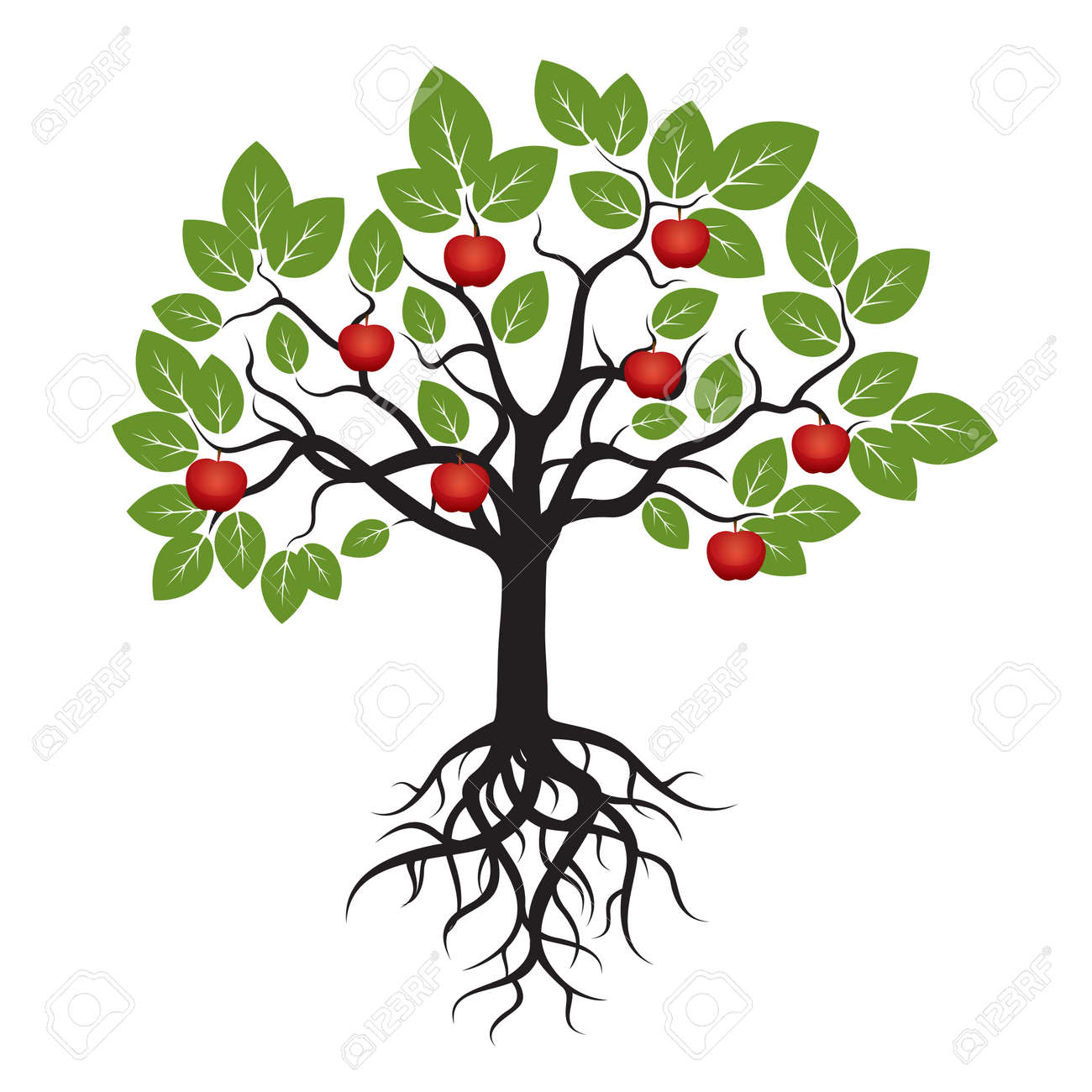 Tree Green Leafs and Red Apple. - 41867815