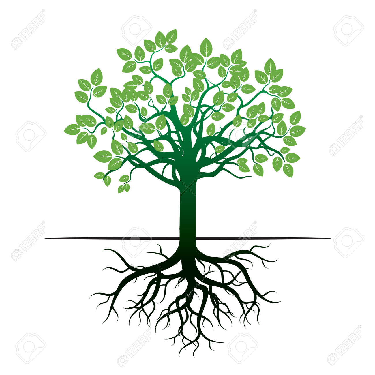 green tree and roots vector icon royalty free cliparts vectors rh 123rf com tree with roots vector logo tree roots vector drawing