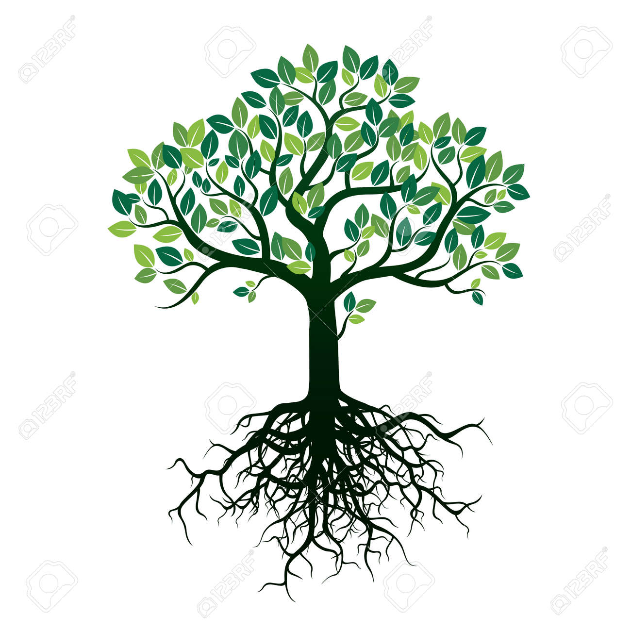 color shape of tree and roots vector illustration royalty free rh 123rf com tree roots vector free tree roots vector logo
