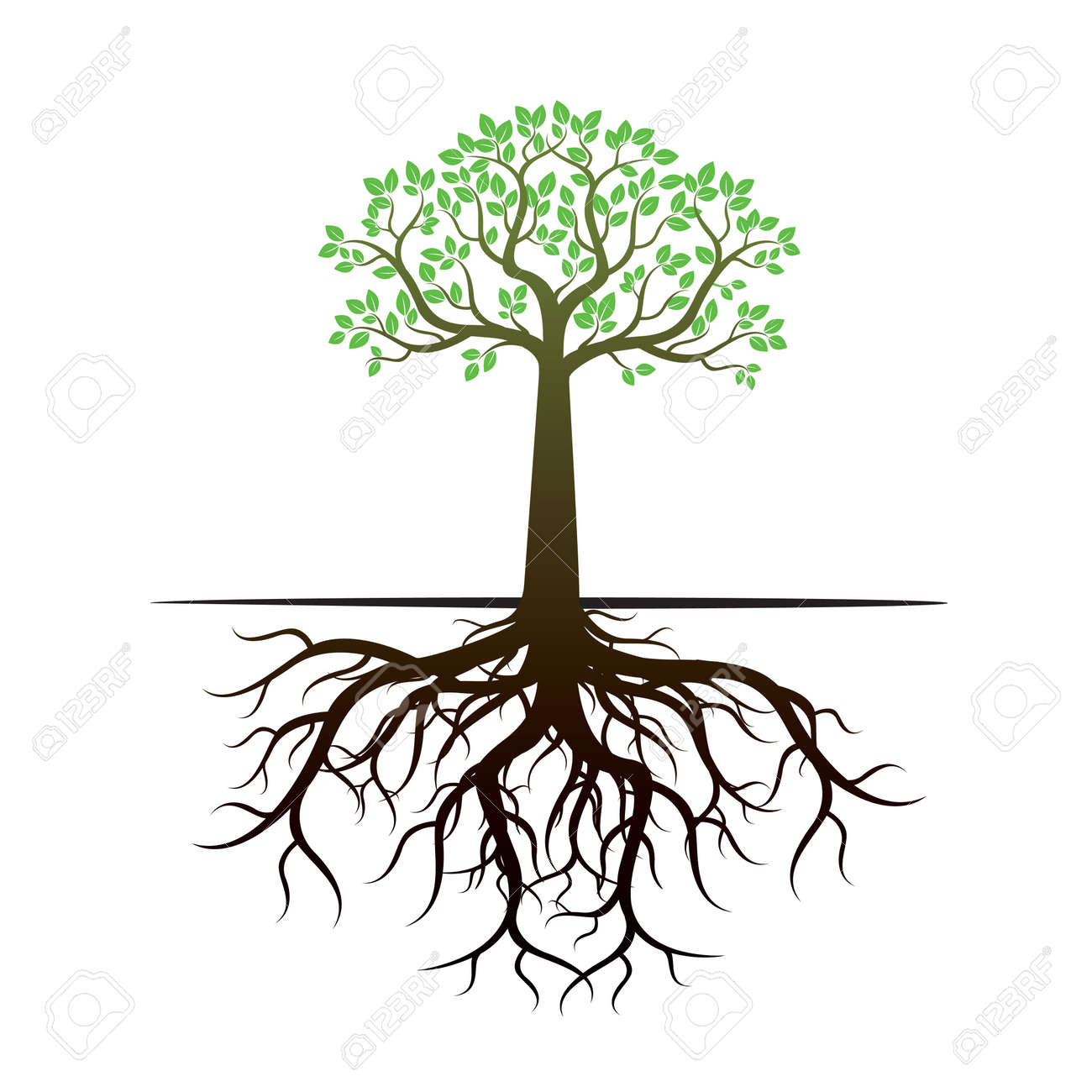 tree and roots vector illustration royalty free cliparts vectors rh 123rf com tree with roots silhouette vector free tree with roots vector free