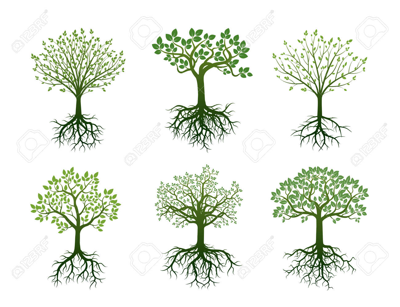 Set of Green Trees with Roots. Vector Illustration. - 59589879