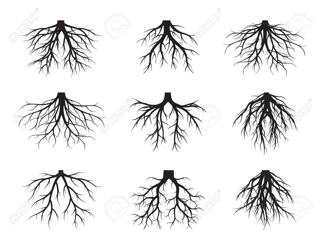 Set Of Black Roots Tree Collection Of Drawings