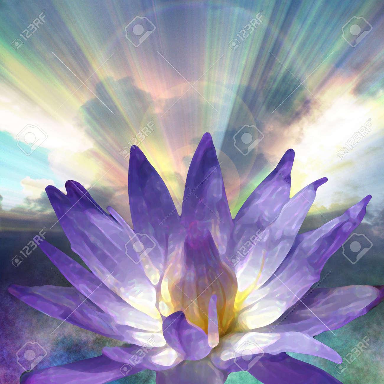 Lotus and Light Stock Photo - 2977965