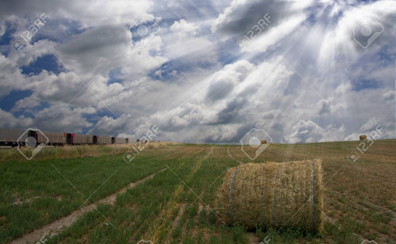 Train and field with hay Stock Photo - 7652642