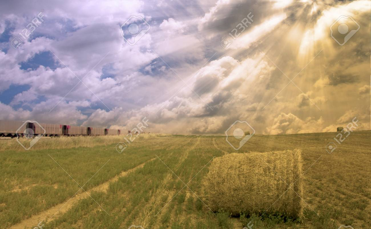 Train and field with hay Stock Photo - 8057946