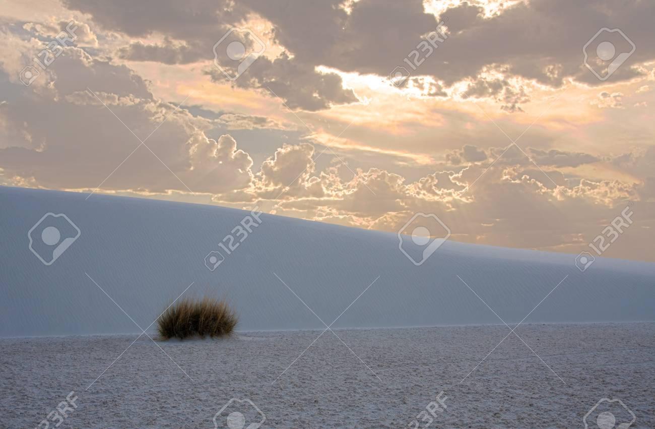 White Sands New Mexico Stock Photo - 8837765