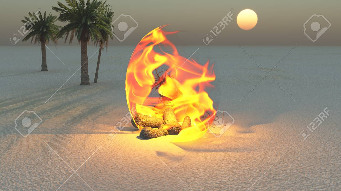 Fire burning in desert Sands Stock Photo - 14299858