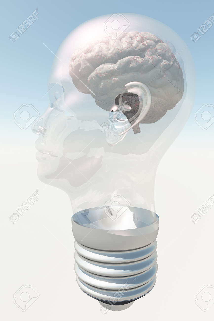 Light bulb in form of human head with human brain Stock Photo - 15488680