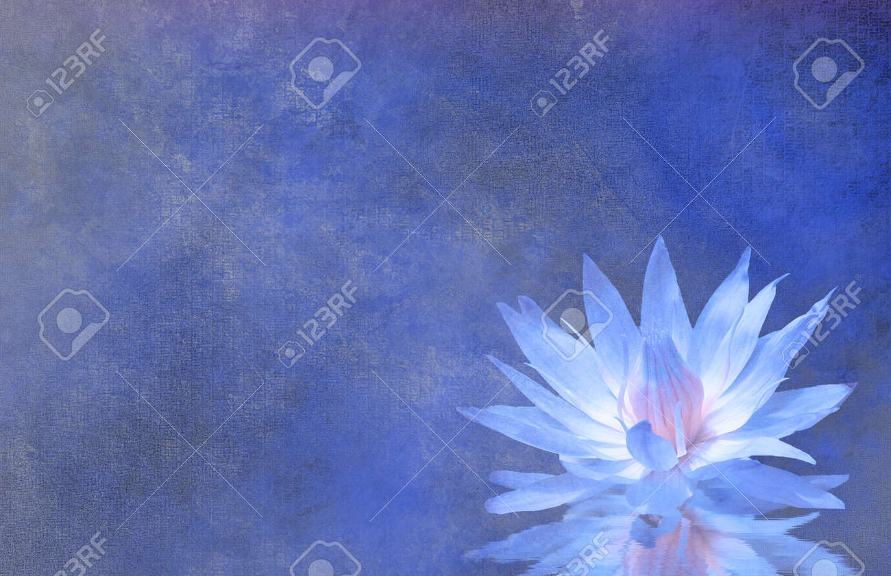 Lotus Blossom Textured Background Stock Photo - 21638707