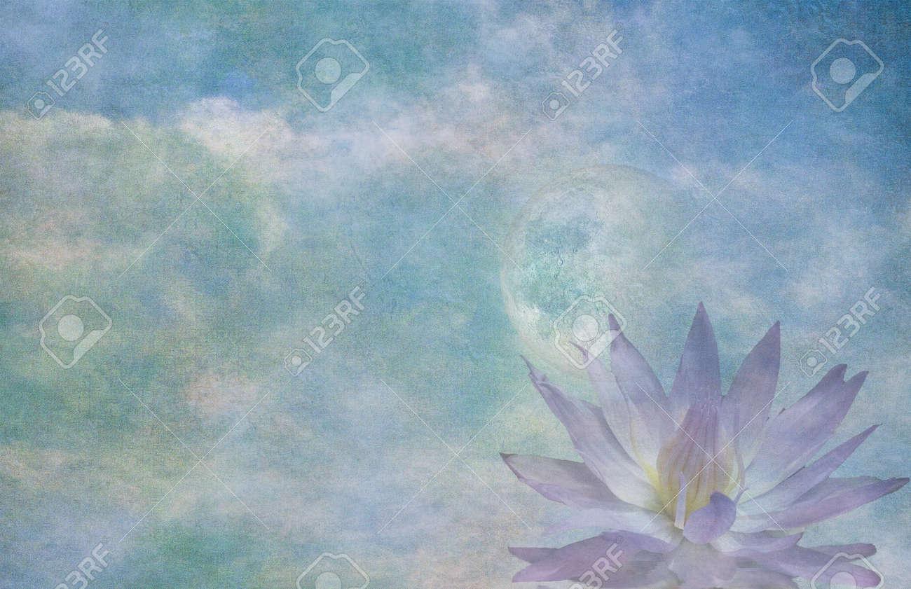 Lotus and moon Stock Photo - 21639655