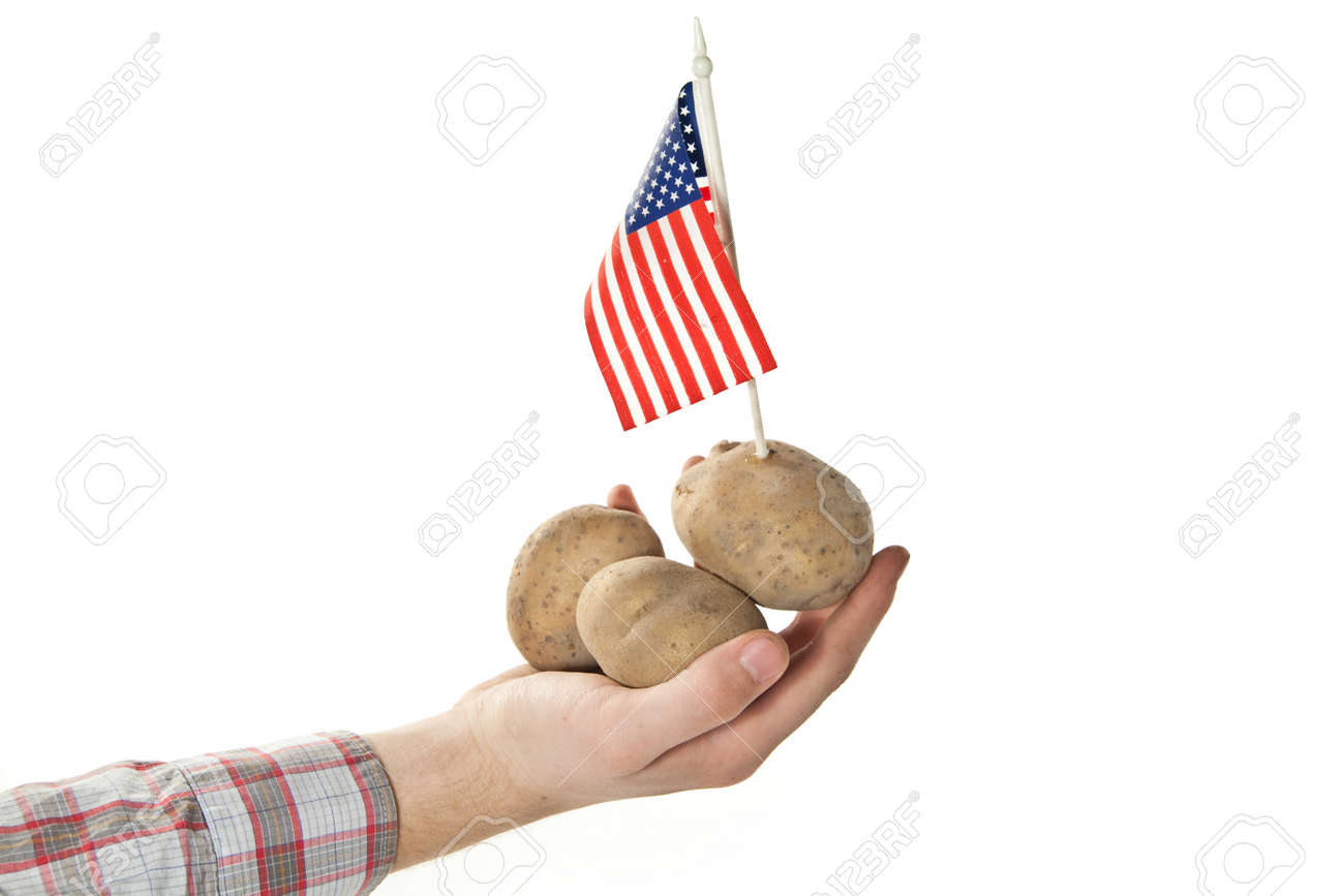 american crops Stock Photo - 15163374