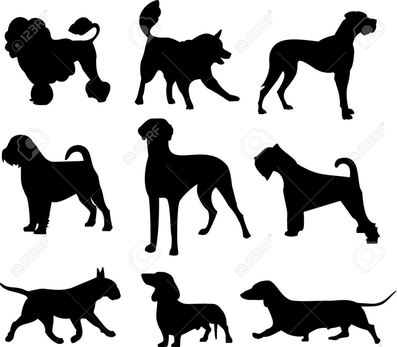 dog set Stock Vector - 14613263