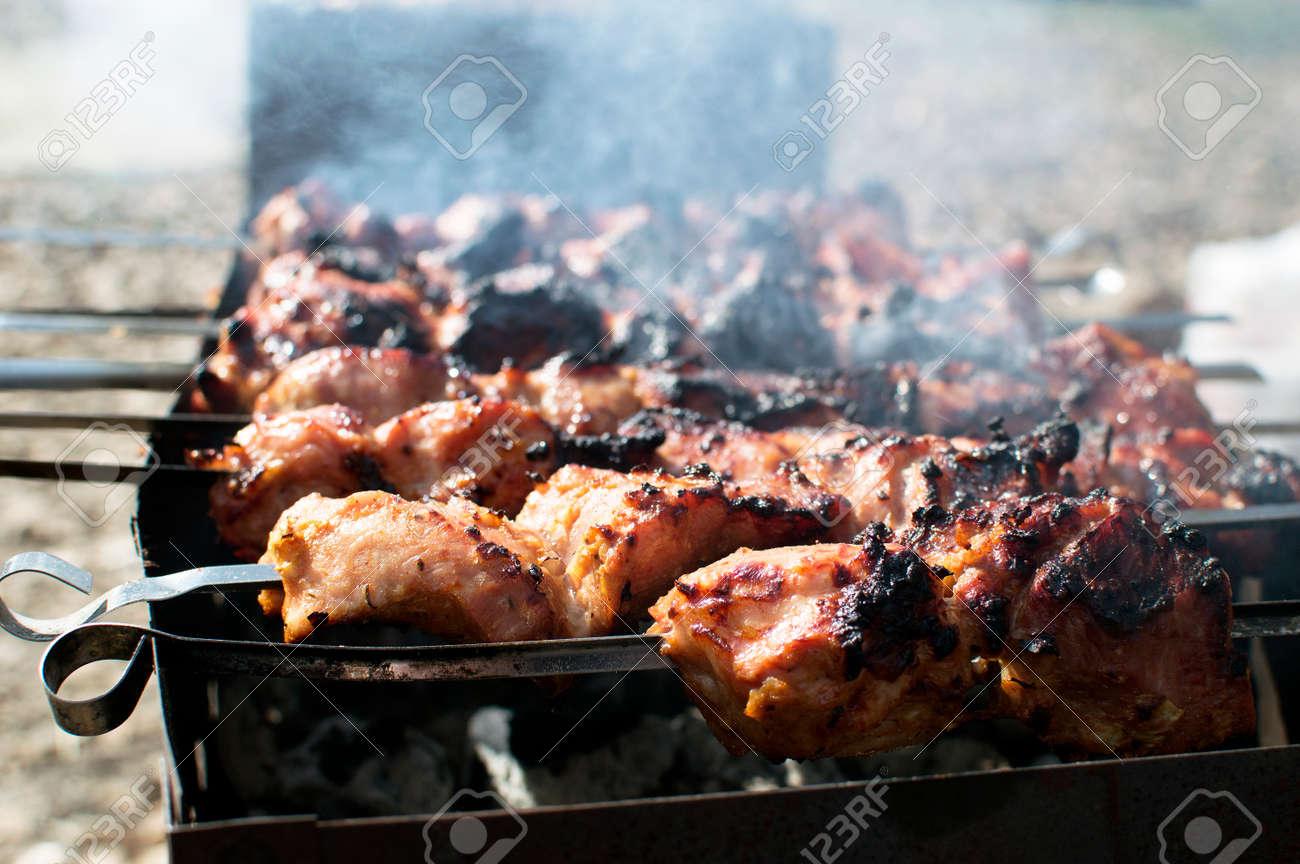Shish tasty kebab is roasted on fire - 57128185
