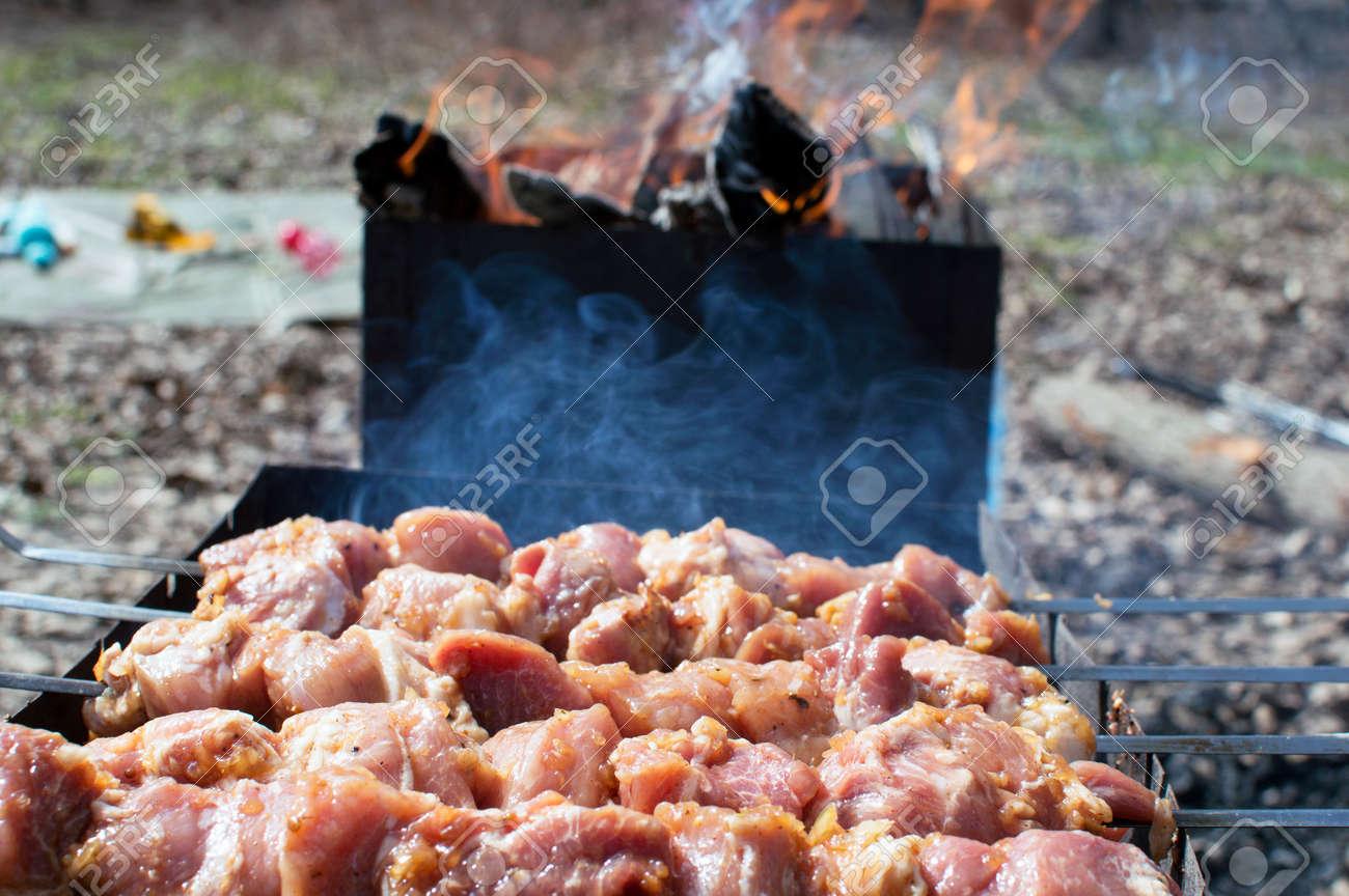 Bake tasty kebabs near barbecue - 57128187
