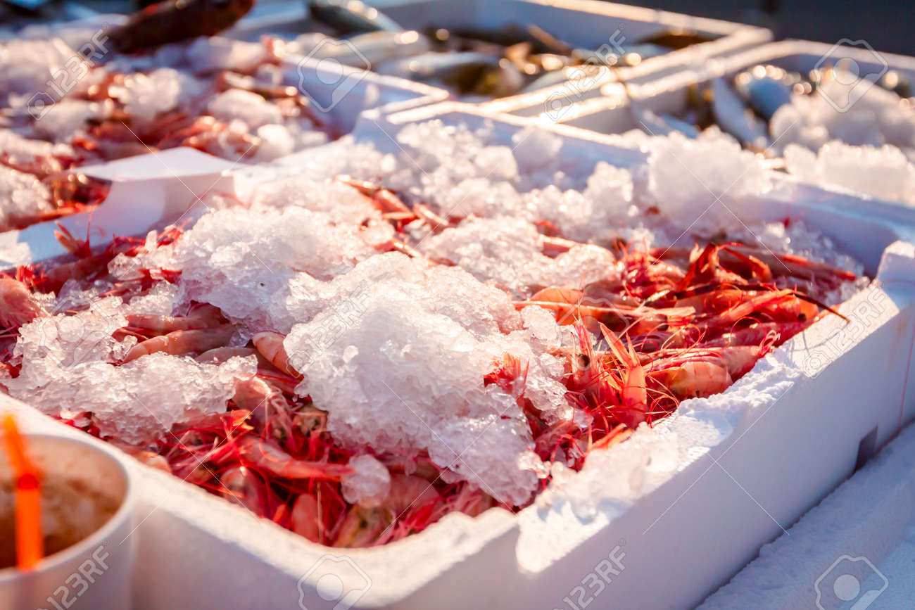 Pile of fresh red shrimps for sale on the seafood market, seafood on ice. - 118086638