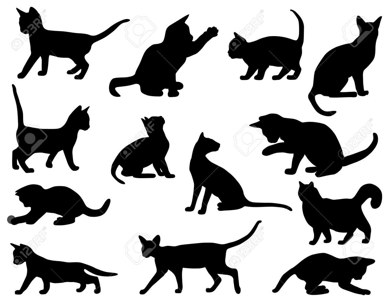 cat Stock Vector - 14984248