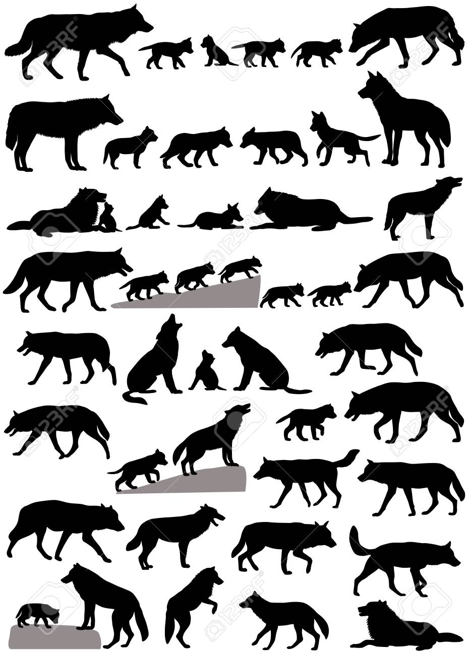 Collection of silhouettes of wolves and wolf-cubs - 102689800