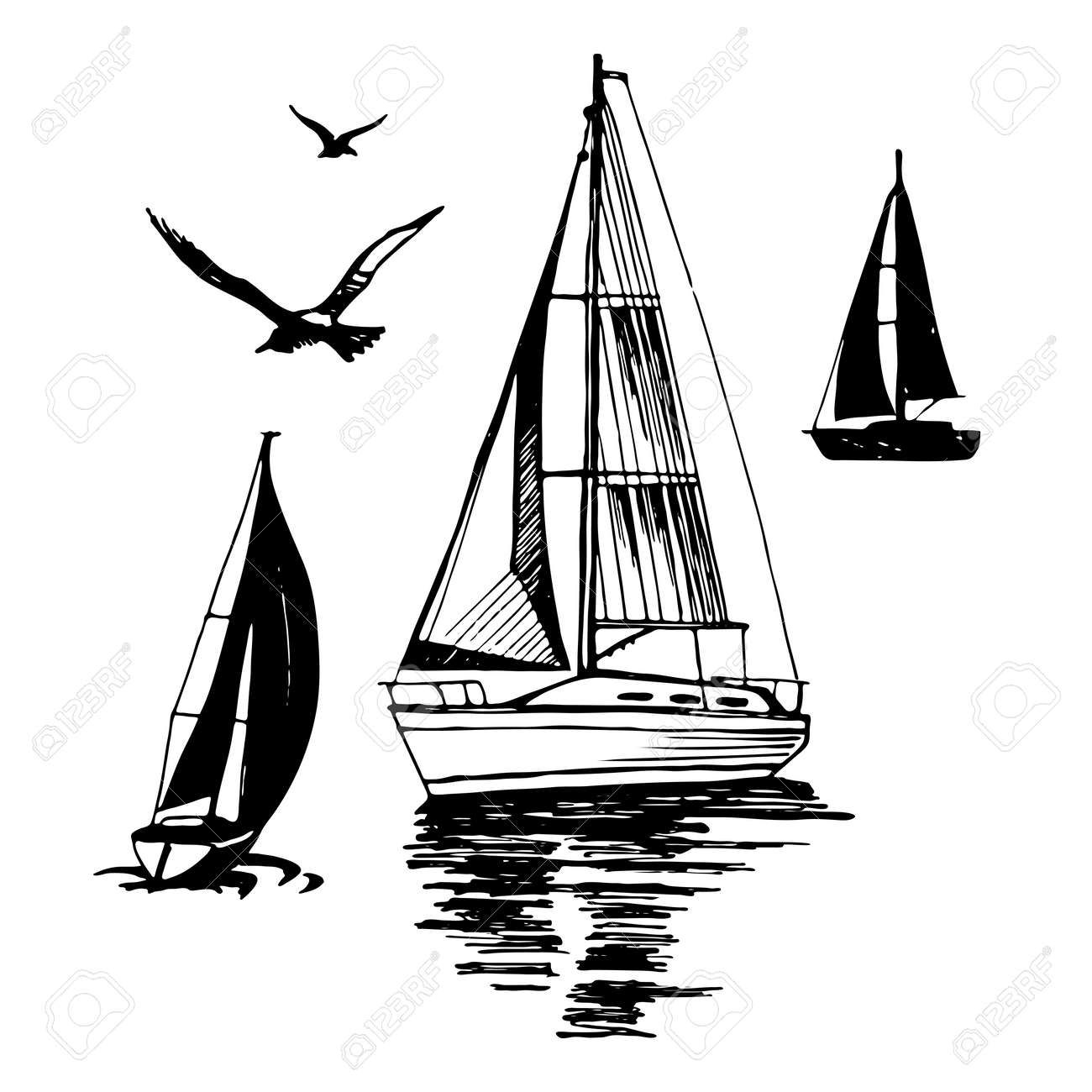 Sea yachts. Flying seagulls. - 86805203