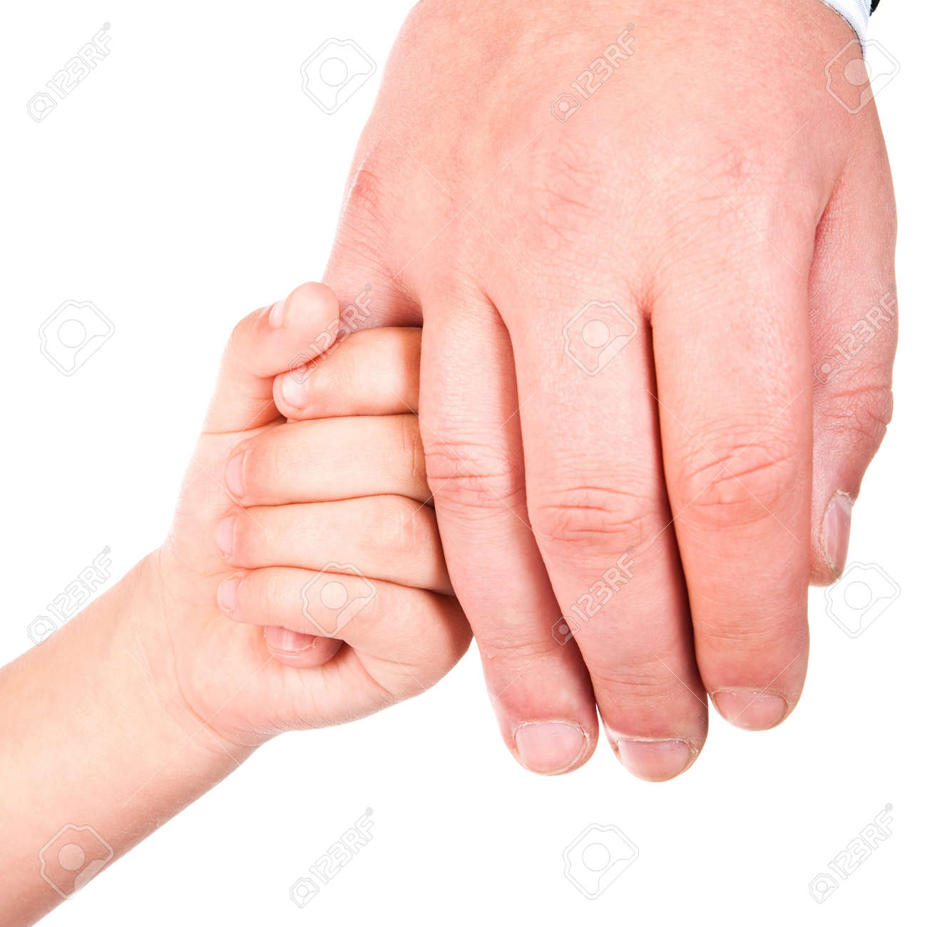 child holds father hand isolated on a white background Stock Photo - 11313508
