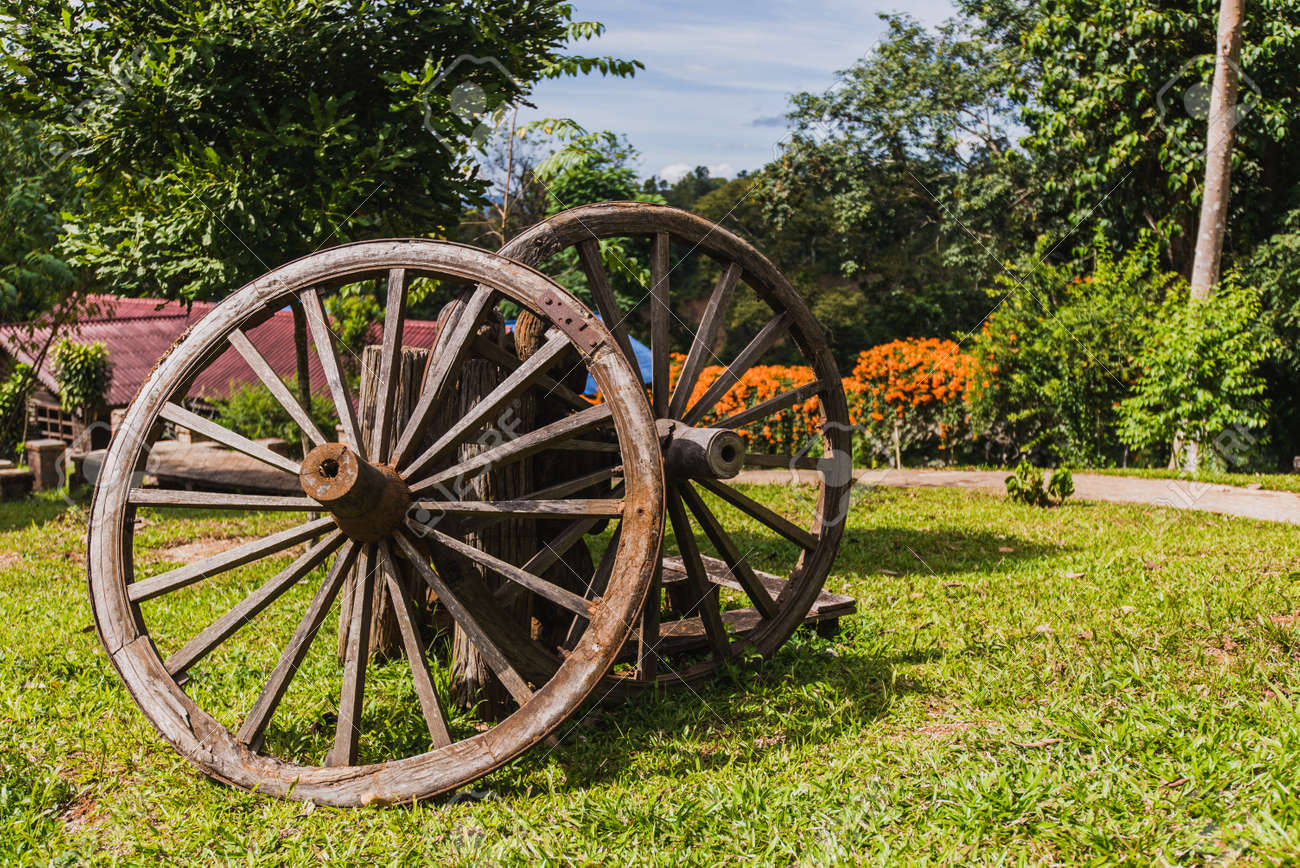 Old Fort Bluff Wagon Wooden Wheel As Decoration At Garden Stock ...