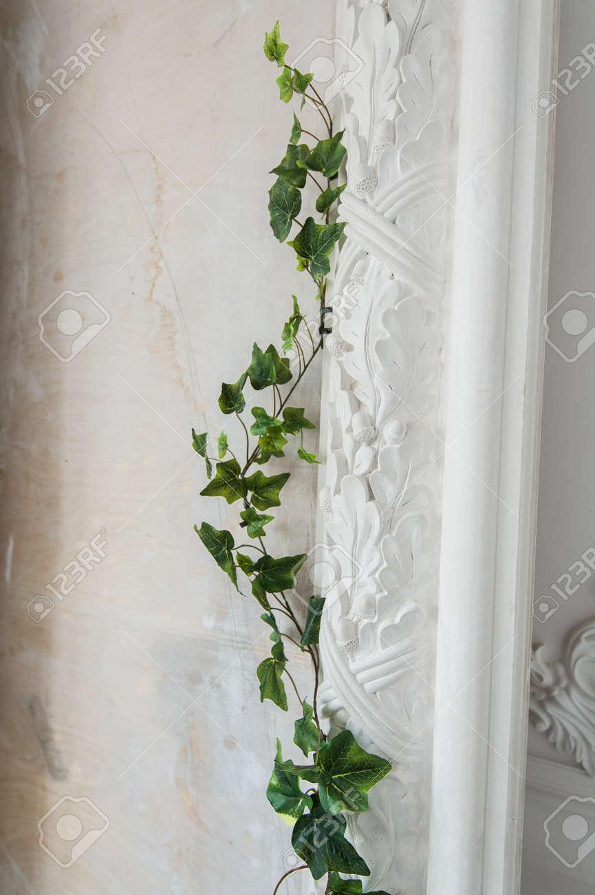 Weiße Kunst Stuck Gips Wand Mit Einem Grean Loach Zweig Auf Sie ...