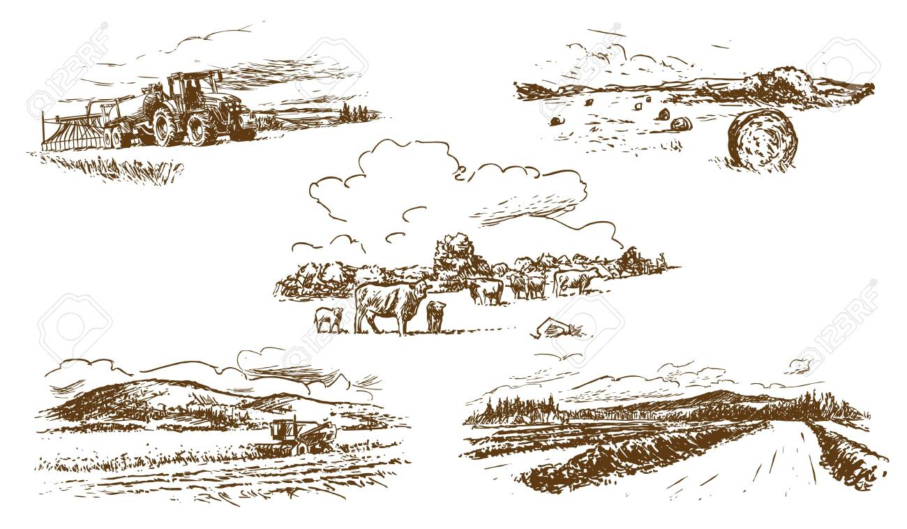 Agricultural Countryside Landscape Set of Hand-Drawn Illustrations (Vector) - 138644762