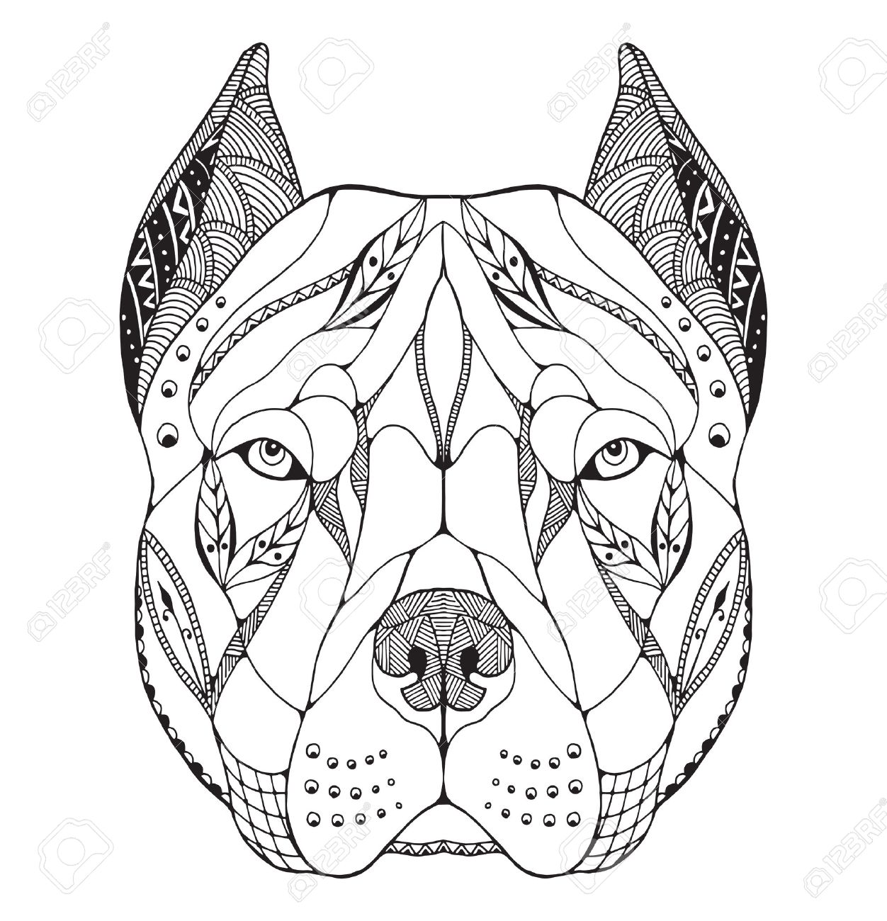 Pit bull terrier head zentangle stylized, vector, illustration, freehand pencil, hand drawn, pattern. Zen art. Ornate vector. Lace. Print for t-shirts. - 69809314