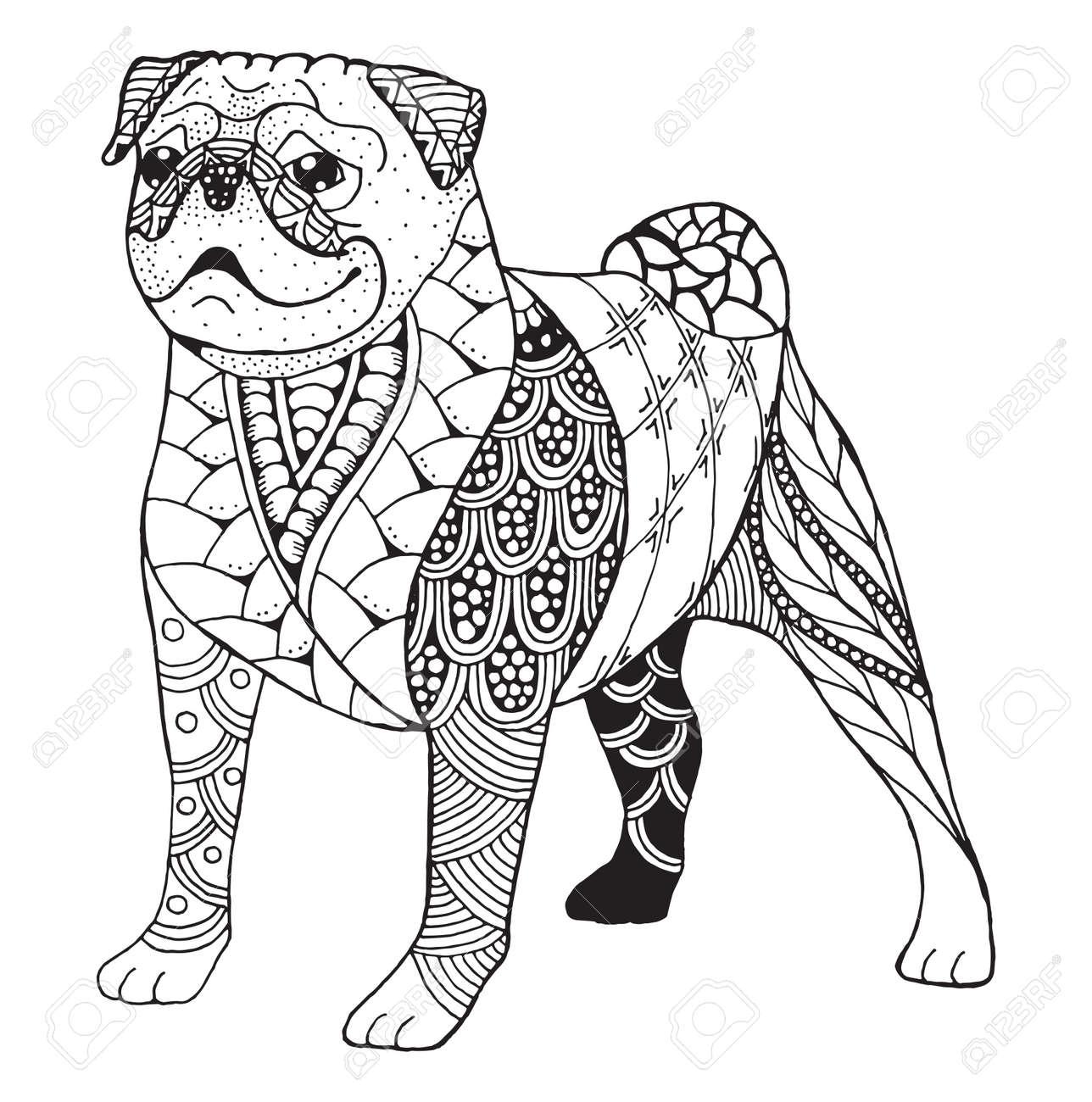 Pug dog zentangle doodle stylized, vector, illustration, freehand