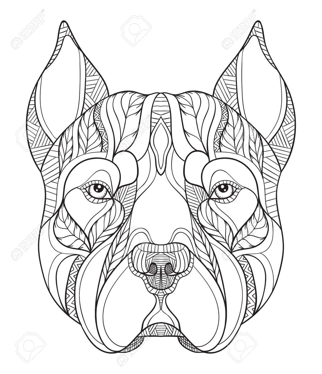 Pitbull Terrier Cabeza Zentangle Estilizado, Vector, Ilustración ...