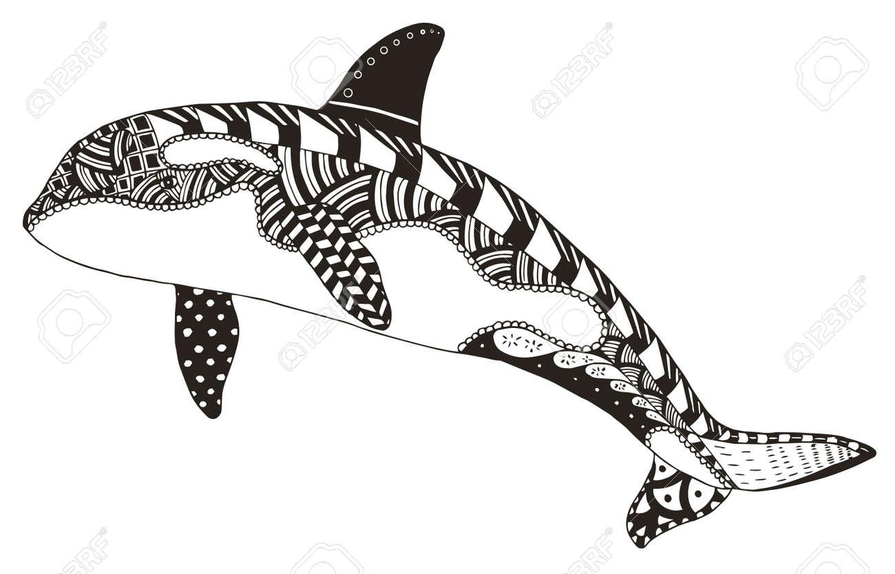 Zentangle De La Orca Estilizado, Vector, Ilustración, Lápiz A Mano ...