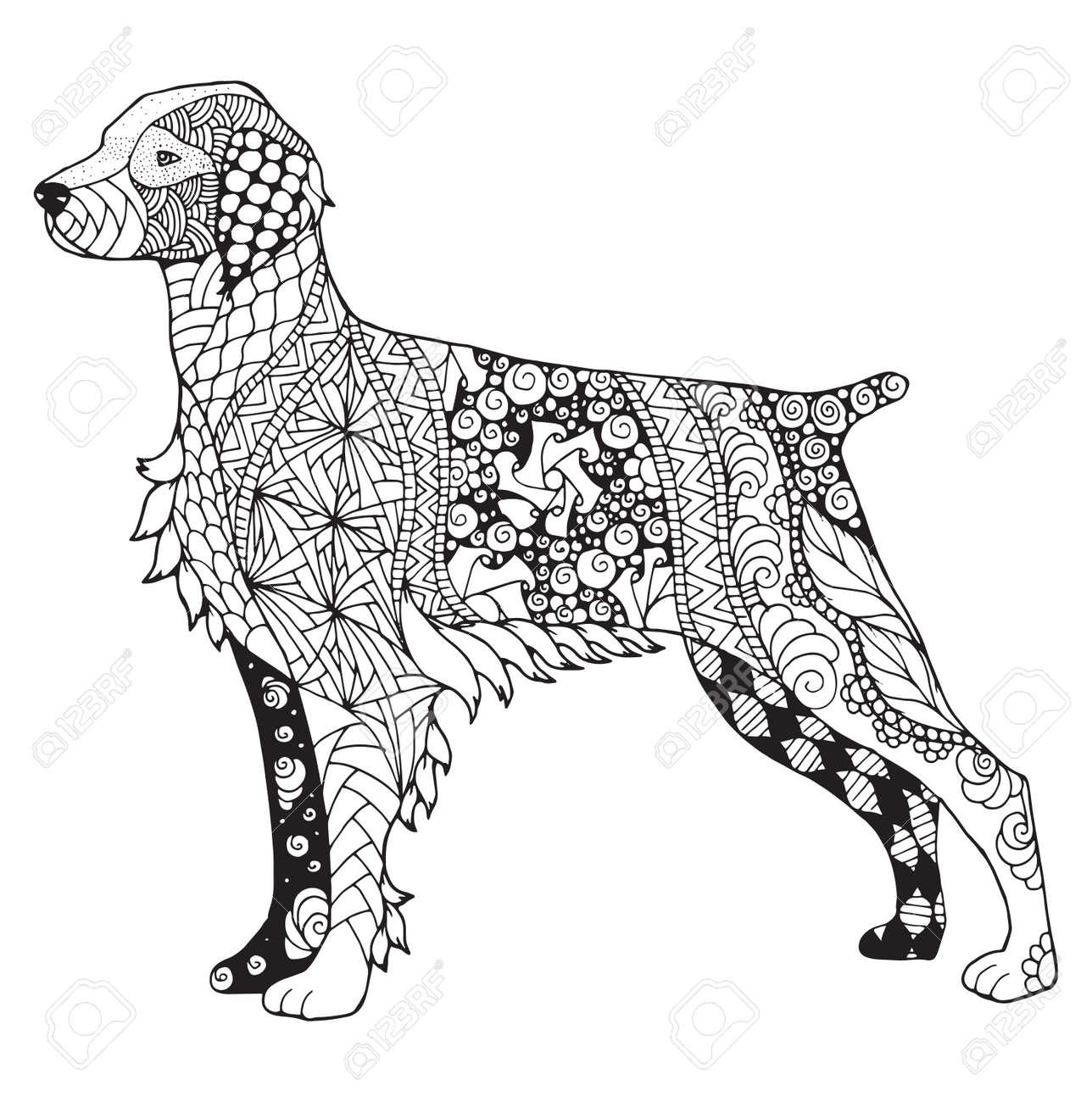 Brittany dog zentangle stylized, vector, illustration, freehand pencil, hand drawn, pattern. Zen art. - 80629076