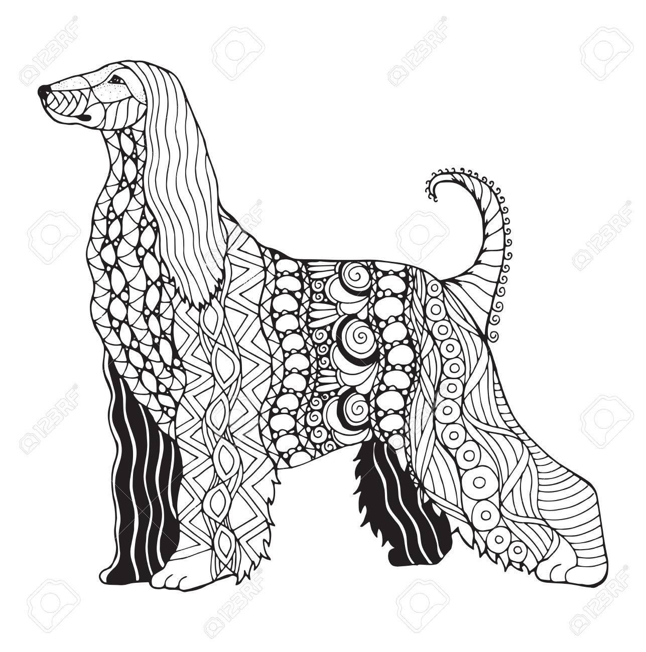 Zentangle De Chien De Chasse Afghan Stylisé Vecteur Illustration Crayon à Main Levée Modèle Art Zen Illustration Noir Et Blanche Sur Fond Blanc