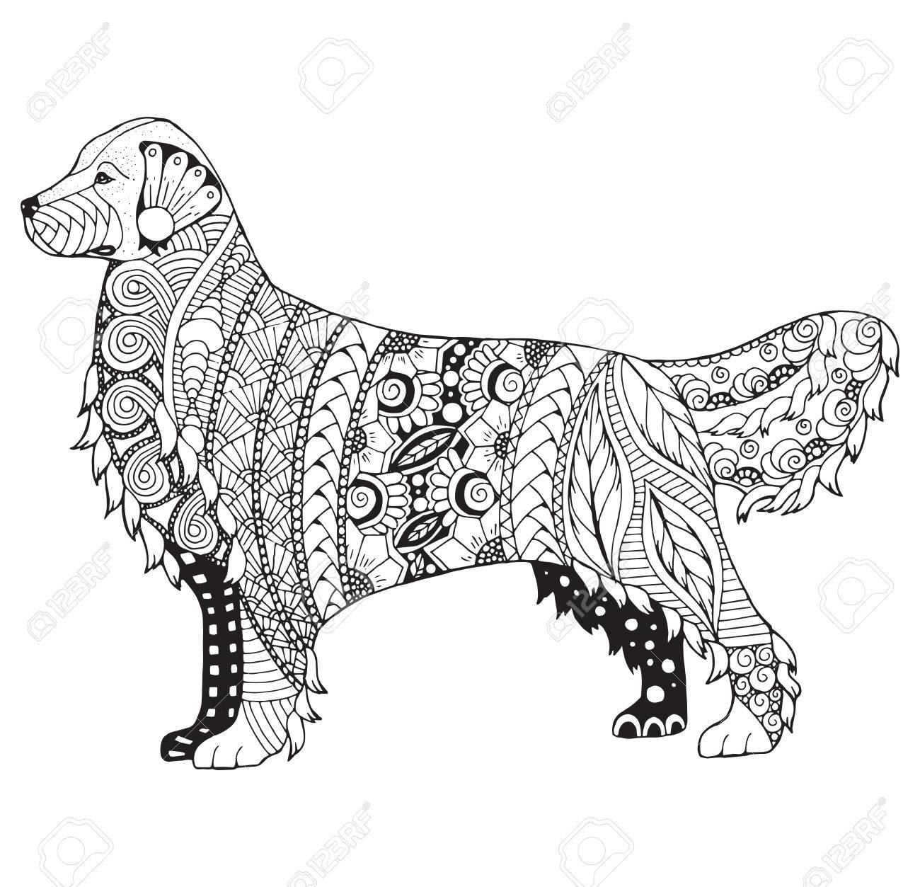 Coloriage Chien Noir Et Blanc.Golden Retriever Chien Zentangle Stylise Vecteur Illustration