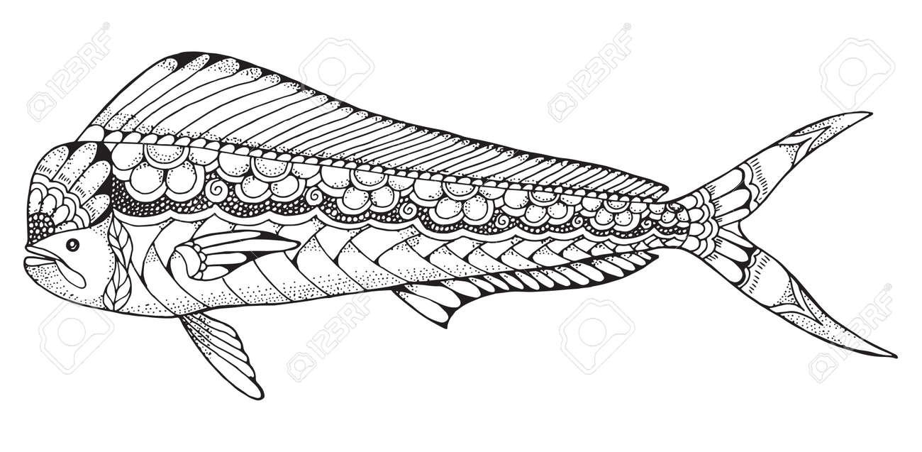 Dorado Mahi Mahi Pez Zentangle Y Estilizada Ilustración Vectorial ...
