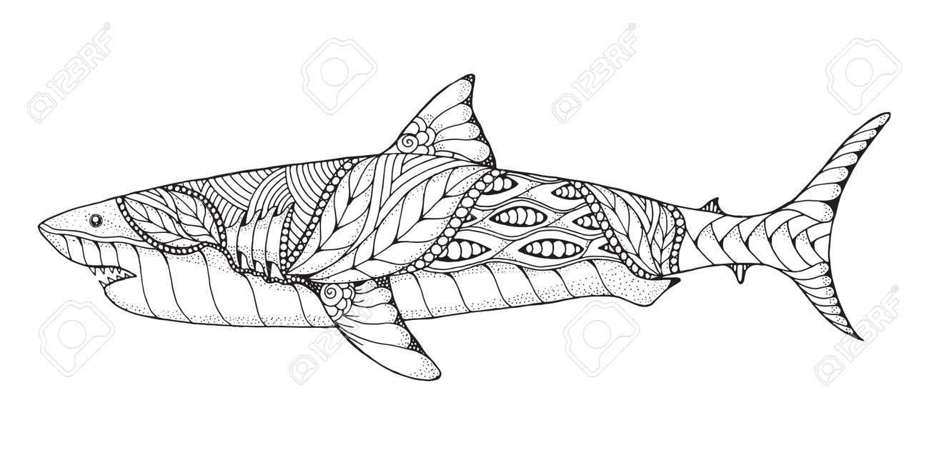Zentangle and stippled stylized great white shark. Vector, illustration, pattern. Zen art. Black and white illustration on white background. Adult anti-stress coloring book. Print for t-shirts. - 81365490