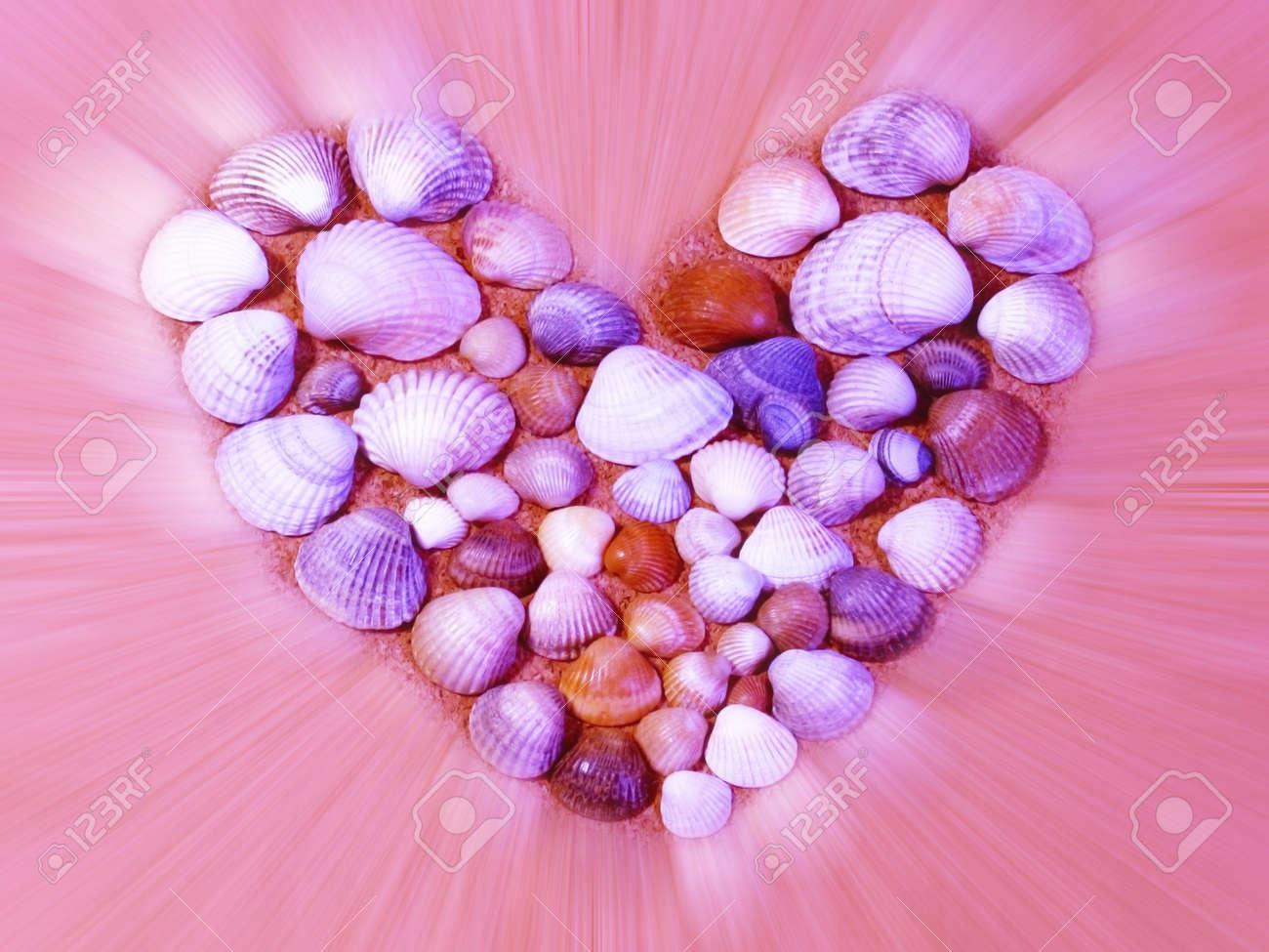 shining heart made of seashells Stock Photo - 6367607