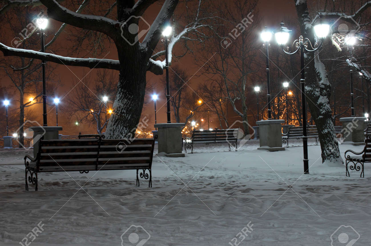 lanterns in park at winter night Stock Photo - 17009110