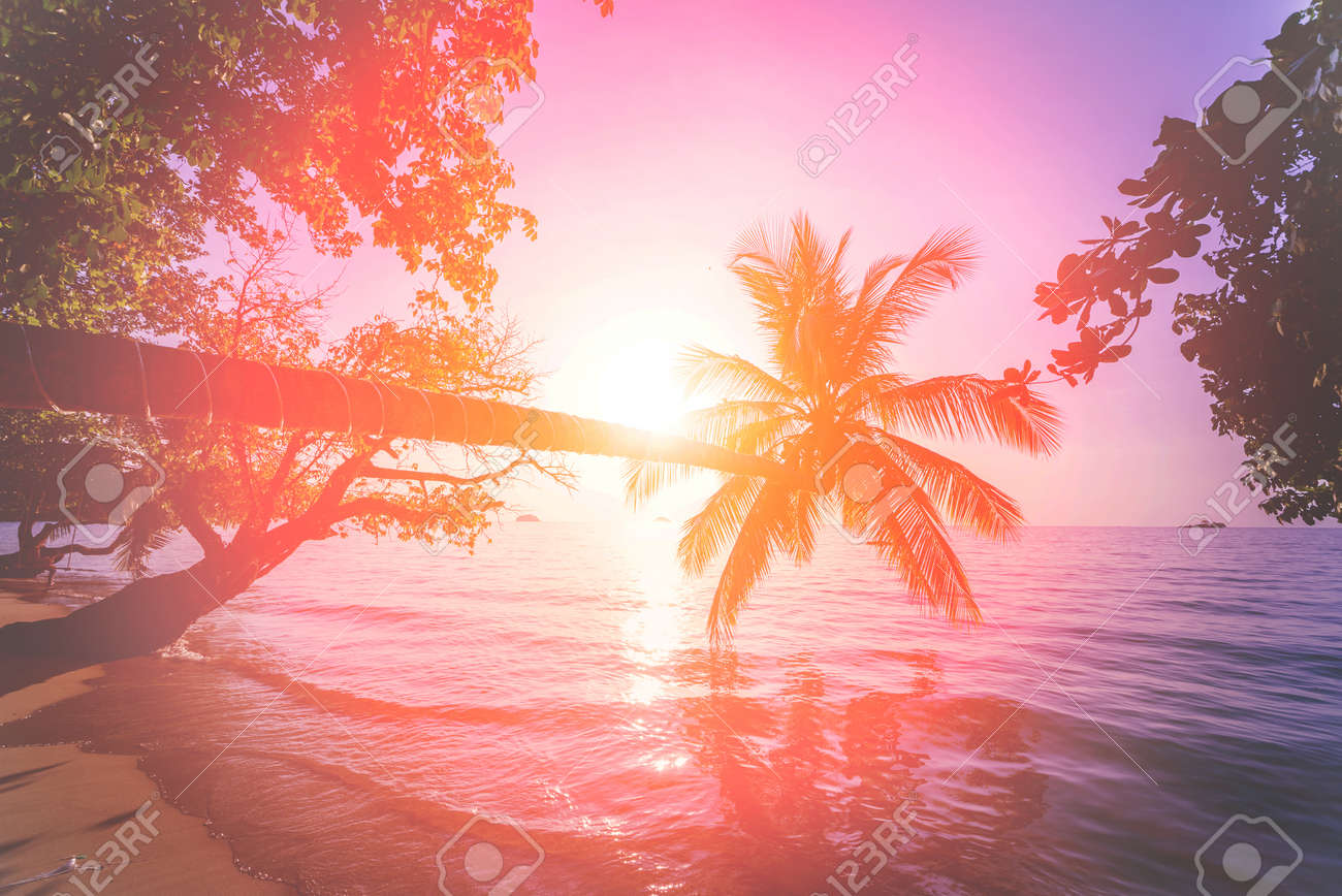 Beautiful sunset at the beach in the tropics. Sky and ocean. Background - 139759930