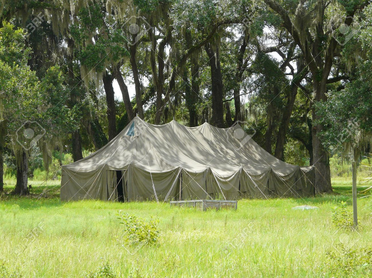 Large old tent among live oak trees with Spanish moss in a park setting. Stock & Large Old Tent Among Live Oak Trees With Spanish Moss In A Park ...