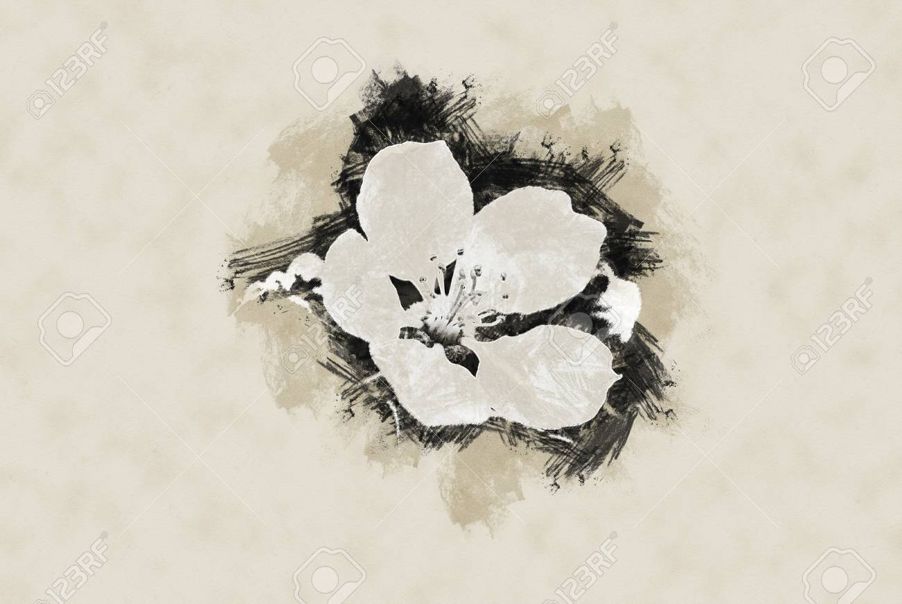 White Flower Of A Blooming Apple Tree Spring Vintage Painting