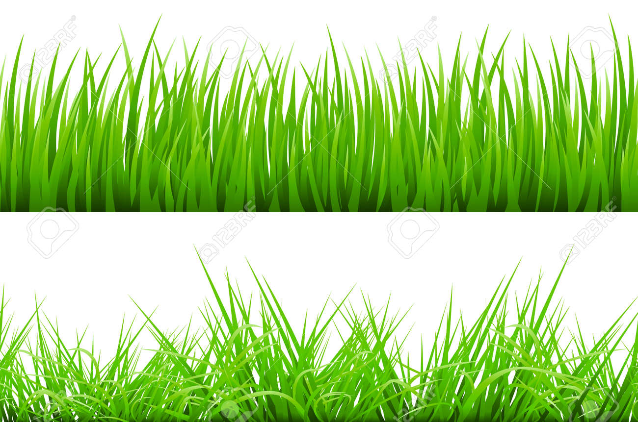 2 backgrounds of green grass isolated on white background vector royalty free cliparts vectors and stock illustration image 68323710 2 backgrounds of green grass isolated on white background vector