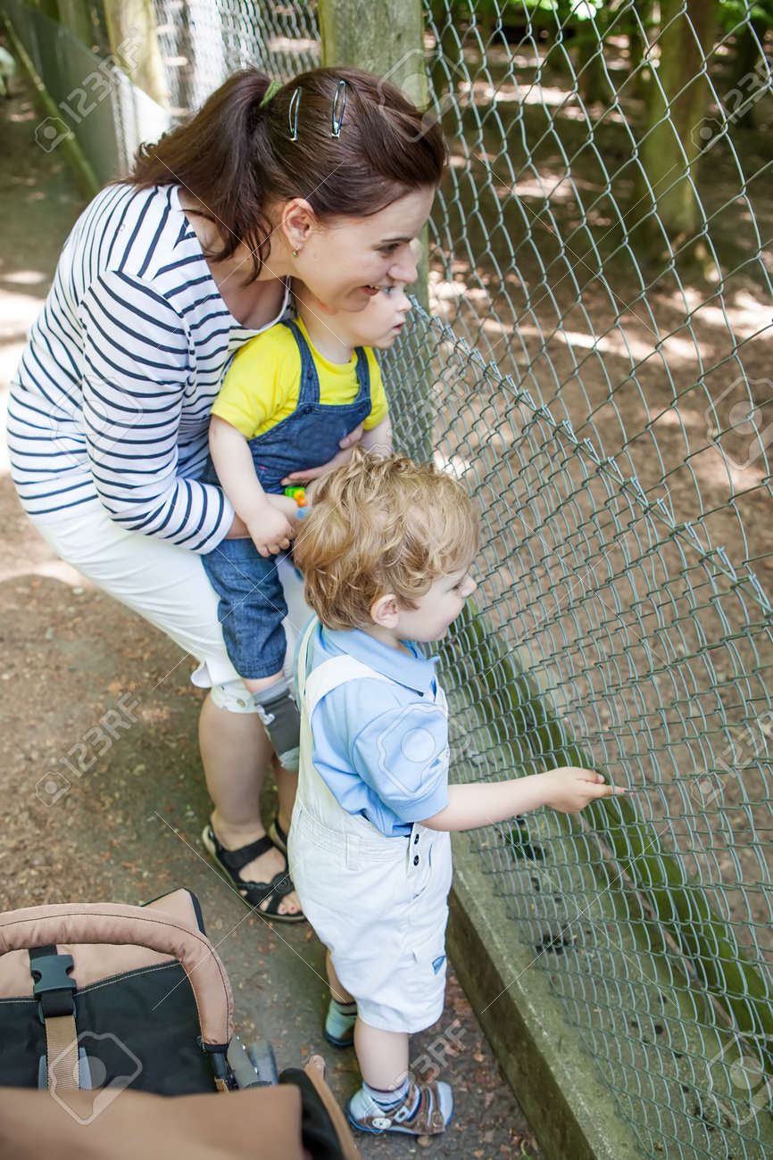 Two little cute boys and young mother feeding animals in zoo Stock Photo - 17600767