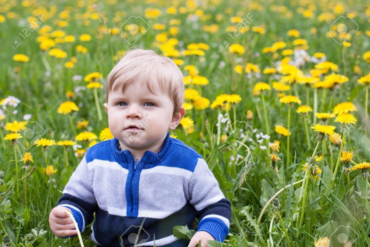 Beautiful baby boy in yellow flowers field summer Stock Photo - 17798974