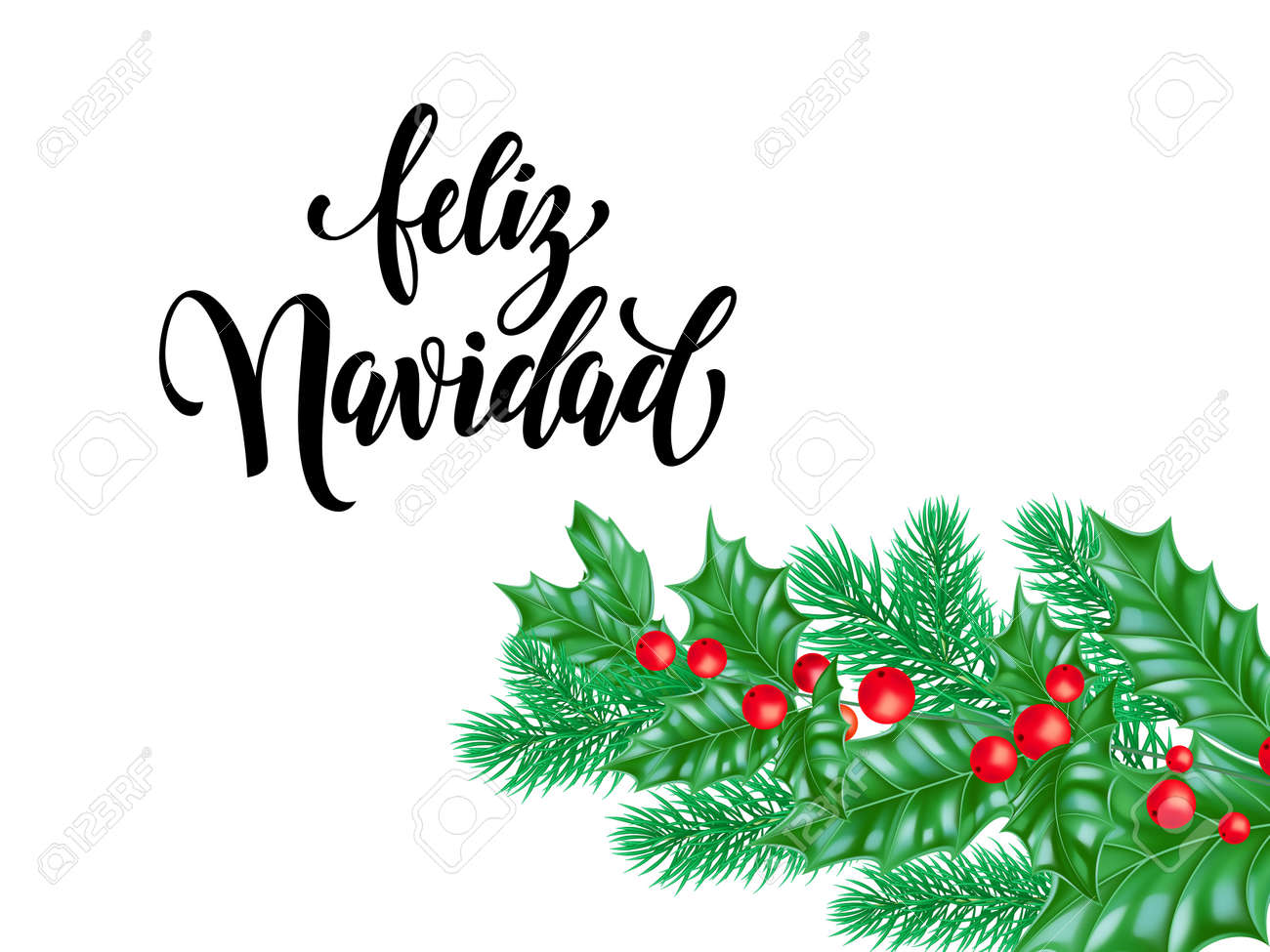 Christmas Spanish.Feliz Navidad Spanish Merry Christmas Holiday Hand Drawn Quote