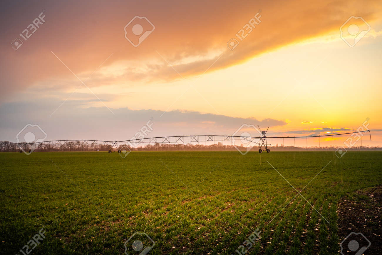 Automated farming irrigation system in sunset - 167392560