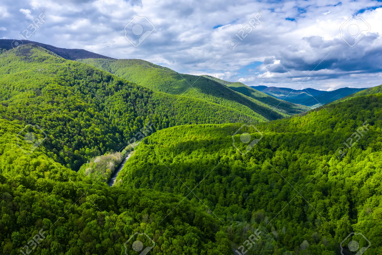 Carpathian mountains covered with beautiful green trees aerial panorama view. - 170818700