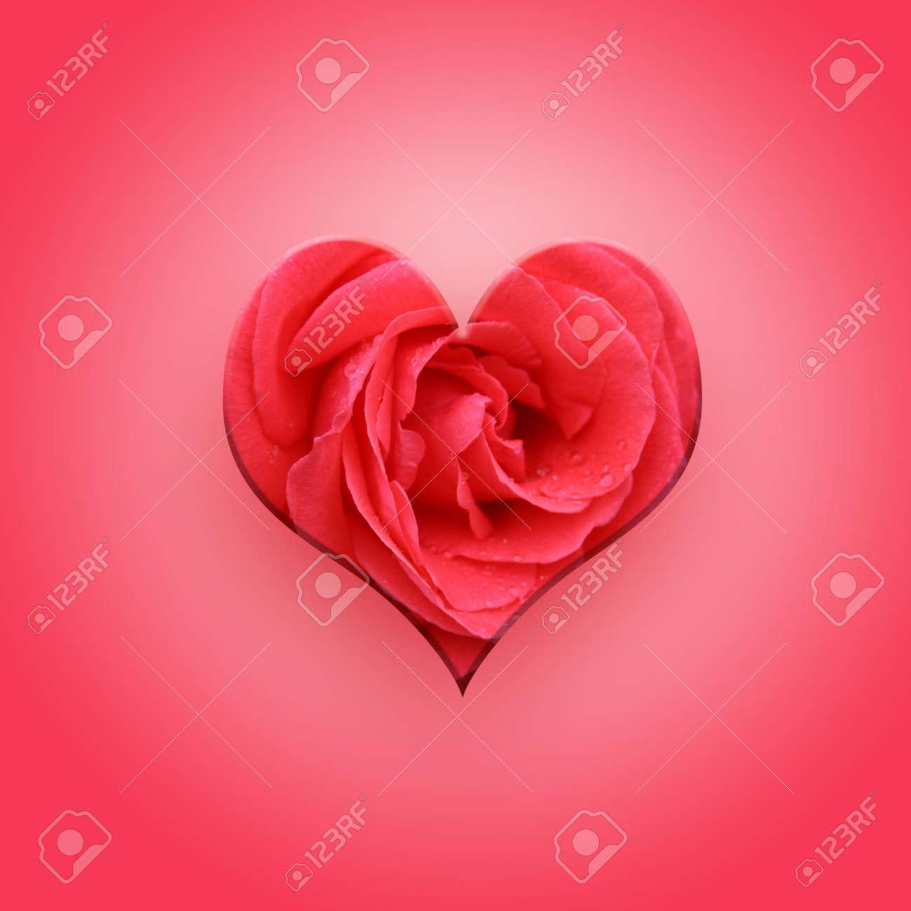 Heart Shaped Flowers New Best Image Flower Of 2018