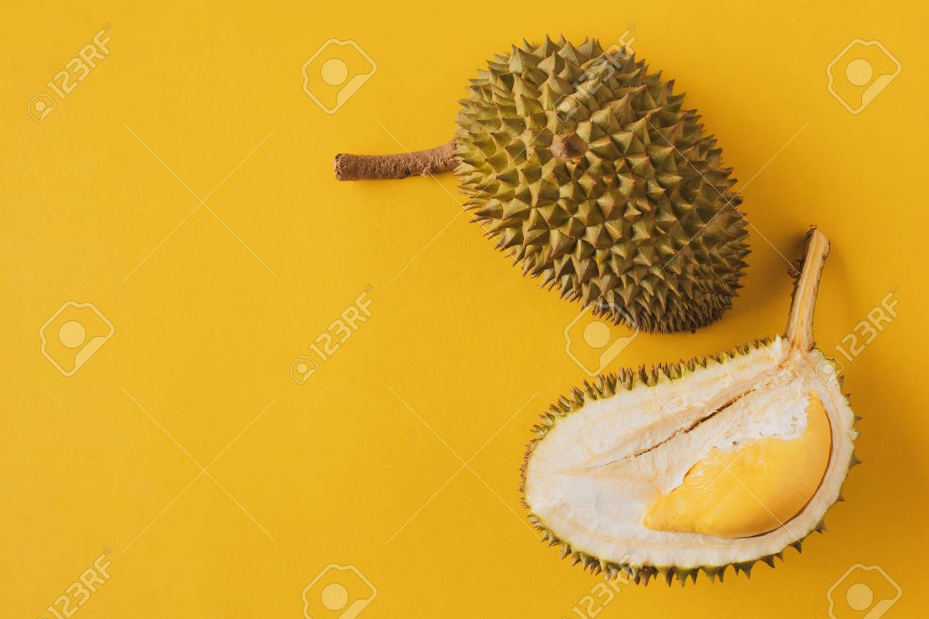King of Fruits, Durian on yellow background - 103333792